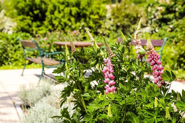 St. Louise - wunderschön mitten im Grünen mit Terrassen und Garten